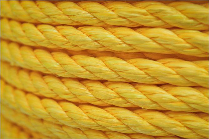 Yellow Poly Jumbo